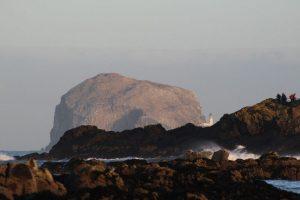 Bass Rock from West Beach